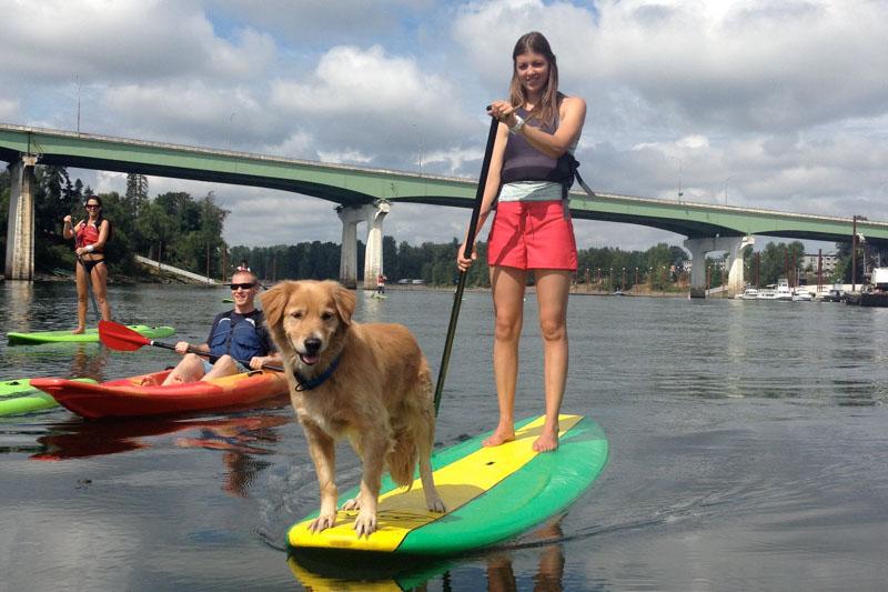enrg-kayaking-willy-falls-tour-gallery-1